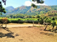 Nice Lot Land near American Pacific international school for Sale in Hangdong Chiang Mai Thailand .