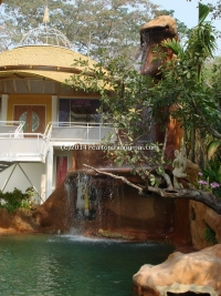 The culture and nature Resort near river& Jungle for rent in Chiangmai,Thailand.